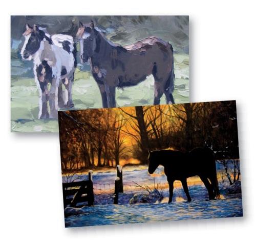 Irish Horse Welfare Trust Christmas cards