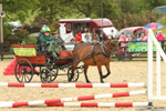 Tinahely Riding Club charity Derby