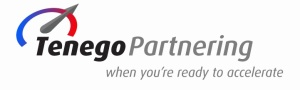 Tenego sales partnering workshop Ireland PR